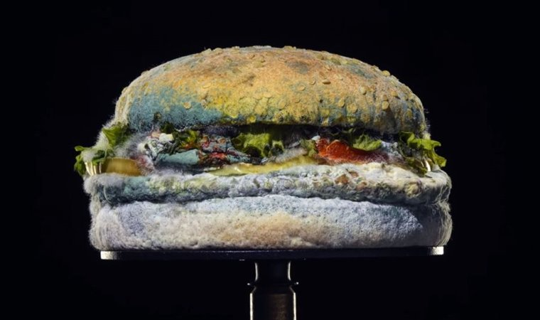 Burger King'den 'Küflü Whopper' reklamı